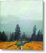 Fall In The Northwest Metal Print