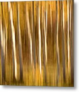 Fall In The Wasatch Metal Print