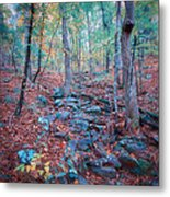 Fall In The Woodlands Metal Print