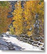 Fall Into Beartrap Meadow - Casper Mountain - Casper Wyoming Metal Print