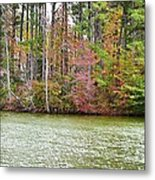 Fall Landscape 2 Metal Print