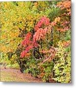 Fall Landscape 3 Metal Print