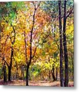 Fall Leaves At Indiana University Metal Print