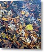 Fall Leaves In A Pond Metal Print
