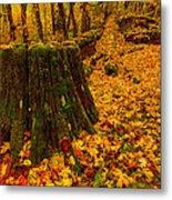 Fall Leaves Mosaic Metal Print by Dan Mihai