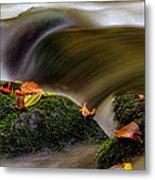 Fall Leaves On Mossy Rocks Metal Print