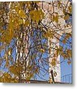 Fall Leaves On Open Windows Jerome Metal Print