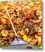 Fall Leaves With Rake Metal Print