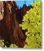 Fall Light From Zion Metal Print