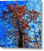 Fall Majesty Metal Print