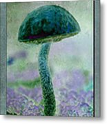 Fall Mushroom 19 Metal Print