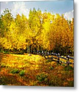 Fall Near Lake City Metal Print