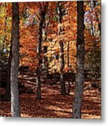 Fall On A Stump Metal Print