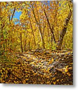 Fall On The Forest Floor Metal Print
