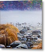Fall On The Merced Metal Print by Bill Gallagher