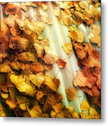 Fall On The Roof Metal Print by Bobbi Feasel
