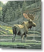 Fall On The Yellowstone Metal Print