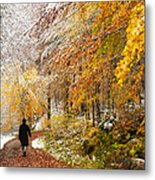 Fall Or Winter - Autumn Colors And Snow In The Forest Metal Print