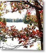Fall Paints A Picture Metal Print