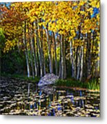 Fall Pond In Mammoth Metal Print