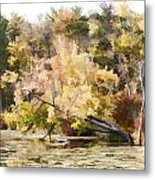 Fall Pond Metal Print