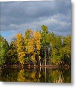 Fall Pond Reflection Metal Print
