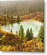 Fall Rain On Wilderness Lake Yukon T Canada Metal Print