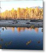 Fall Reflection 2 Metal Print