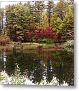 Fall Reflection And Colors Metal Print