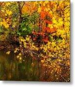 Fall Reflection Metal Print by Robert Mitchell