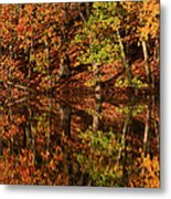 Fall Reflections Metal Print by Karol Livote