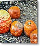 Fall Rejects Metal Print