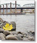 Fall Season Along Portland Willamette River By Marina Metal Print