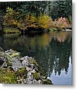 Fall Series 29 Metal Print