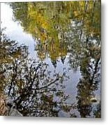 Fall Series 34 Metal Print