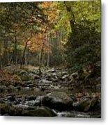 Fall Stream Cades Cove Gsmnp Metal Print
