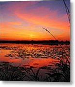 Fall Sunset In The Mead Wildlife Area Metal Print