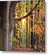 Fall Sunset Metal Print by Jennifer  King