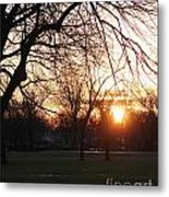 Fall Sunset Tree Silhouettes Metal Print