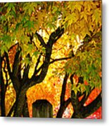 Fall Trees On A Country Road 3 Metal Print
