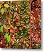 Fall Trio Collage Metal Print