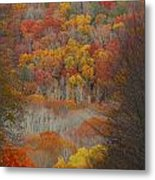 Fall Tunnel Metal Print