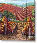 Fall Vineyard Metal Print