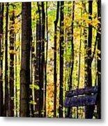 Fall Woods In Michigan Metal Print