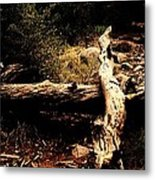 Fallen Beauty Metal Print
