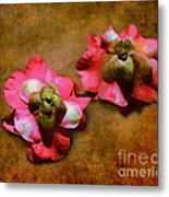 Fallen Blossoms Metal Print