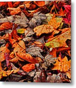 Fallen Colors Metal Print
