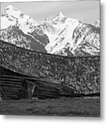 Fallen House In The Wilderness Metal Print