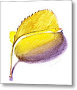 Fallen Leaf Yellow Shadows Metal Print