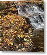 Fallen Leaves At A Waterfall Metal Print